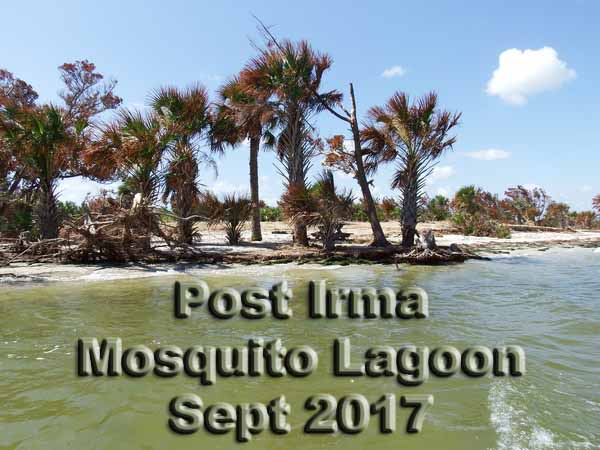 Mosquito Lagoon Cape Canaveral Shores Canoe And Kayak Camping
